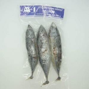 Aa-1 Baby Tuna ( Tulingan)...